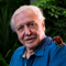 Photo of Sir David Attenborough with exotic beetle on shoulder